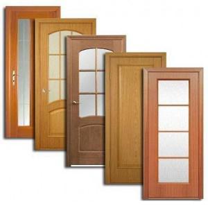Двери, дверные блоки Звездного